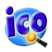 Perfect Icon cover