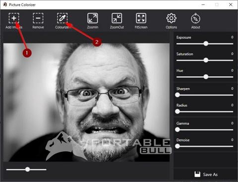 Picture Colorizer Pro
