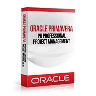 Primavera P6 Professional cover