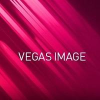 Vegas Image Icon